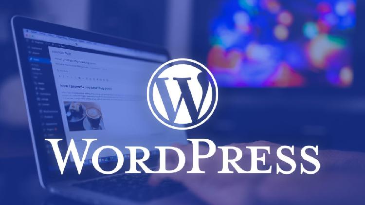 آشنایی با نسخه های وردپرس در آموزش تک