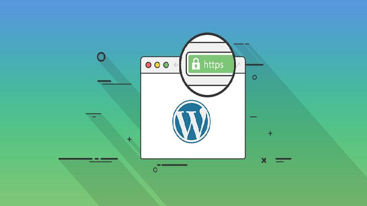 آشنایی با گواهینامه SSL برای سایت در آموزش تک