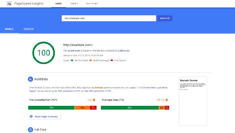 نکات مهم برای استفاده از گوگل Pagespeed insights در آموزش تک